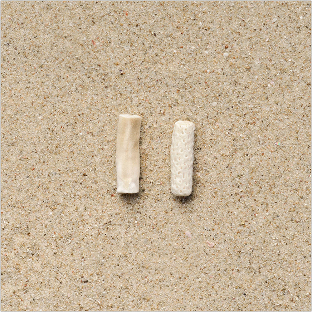 Involuntary-Pairs-liina-klauss-cigarette-but—coral—liinaklauss